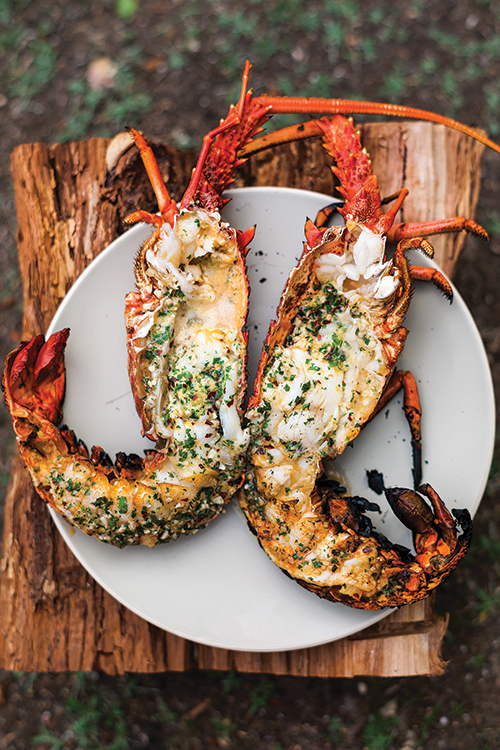7-feature_curtis-stone-lobster_i157